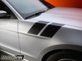 2013 -2014 Ford  Mustang Fender Hash LeMans Side Stripes Decals