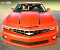 2010-2013 Chevrolet Camaro Hood Spears Side Stripes Decals Vinyl 2011 2012 2013