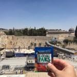 Flax Chia Paks in Israel.