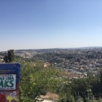 Flax Chia Paks overlook the Old City in Jerusalem.
