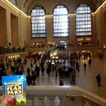 Flax Paks are as busy as Grand Central Station!