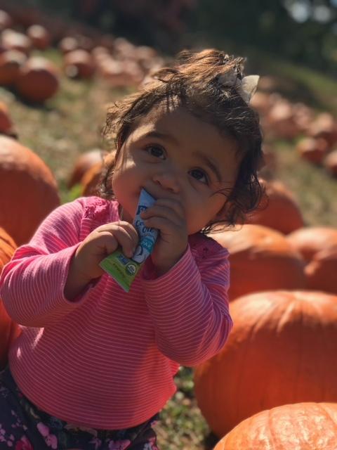 Pumpkin Paks