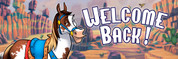 Welcome Back Vinyl Banner - Western, Horse