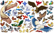 Farm Themed Extra Birds Peel-n-Stick Pack