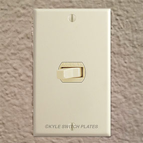 info-cover-despard-switch-strap-with-wall-plate.jpg
