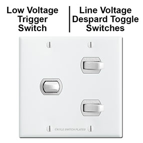 Line & Low Voltage Despard Switches