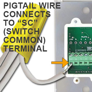 Wire Pigtail Into Switch Common Terminal