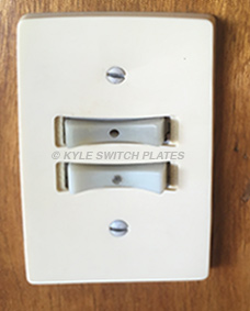 Remcon Low Voltage Switches