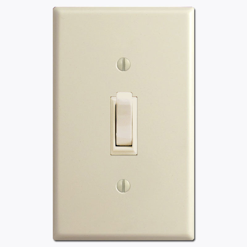 Understanding electrical light switches rockers and outlet devices info toggle switch and plateg aloadofball Gallery