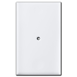 Specialized Center Screw Blank Outlet Cover Plate White