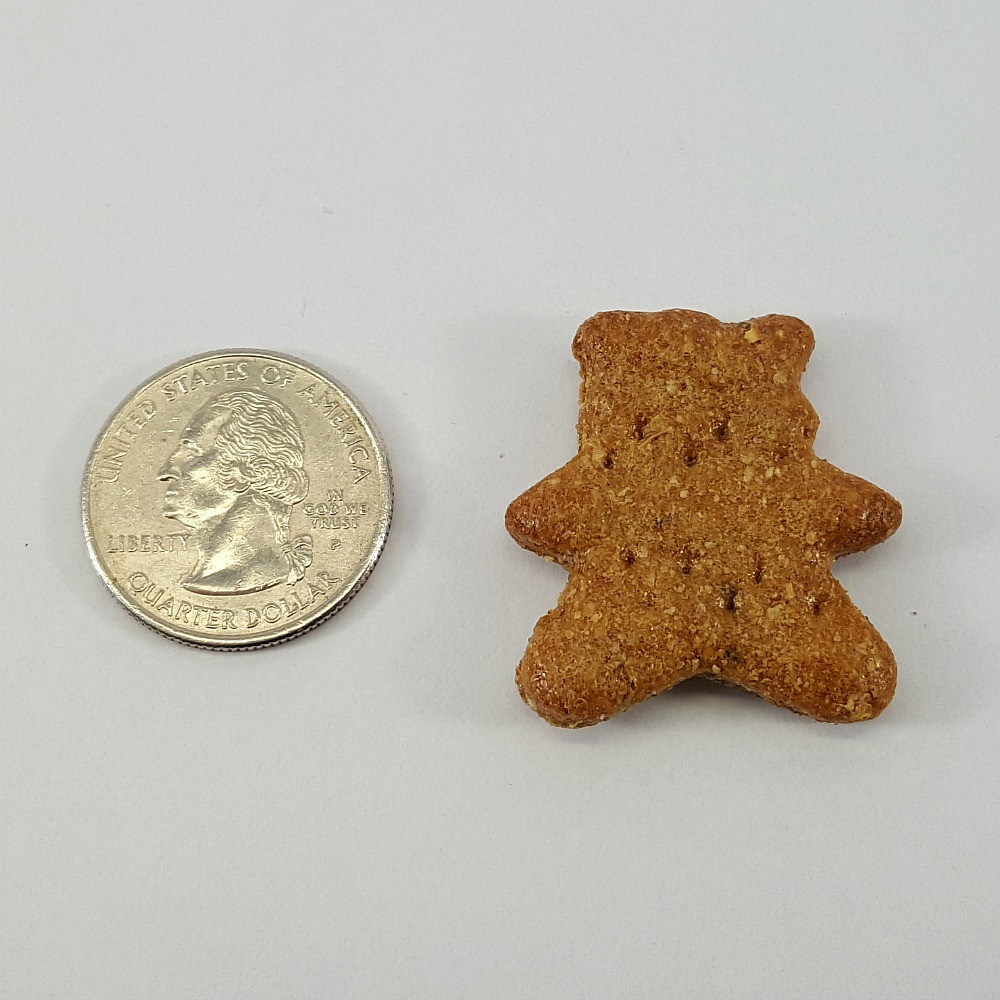 Ginger Bear Treat for Size