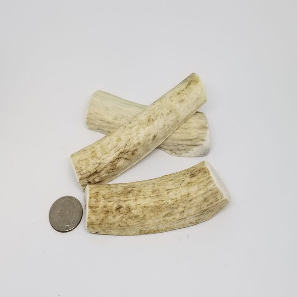 Sample of Petite Antlers. Antler will vary from those shown.