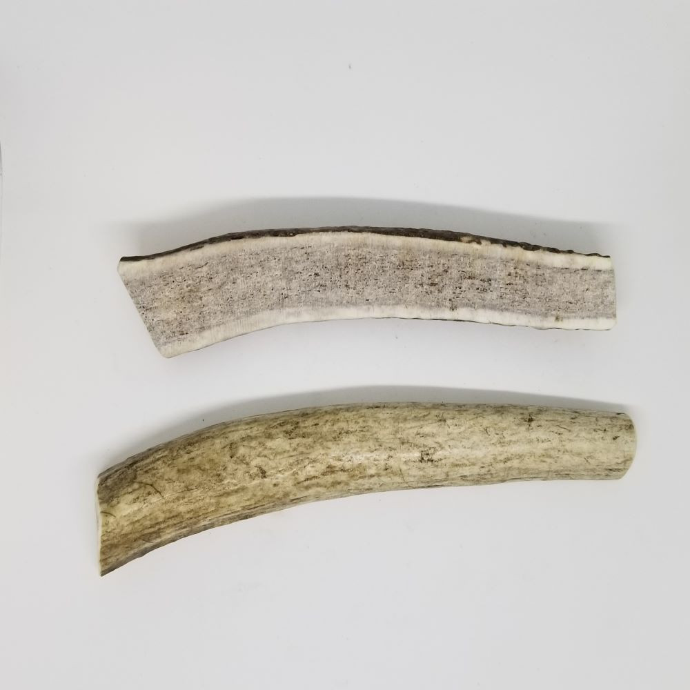 Sample of Medium Split Antlers. Antler will vary from those shown.