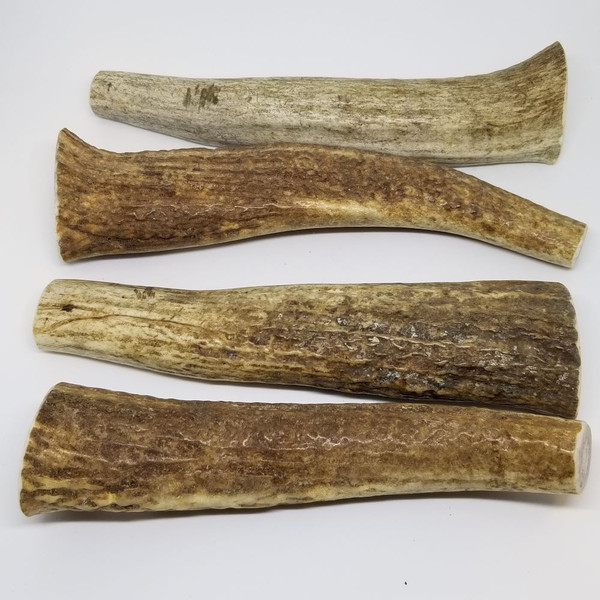 Sample of Large Antlers. Antler will vary from those shown.