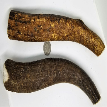 Sample of Jumbo (Whole) Antlers. Antler will vary from those shown.