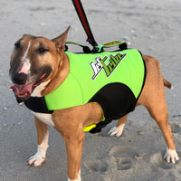 Dog Vest PWC Jetski Ride & Race Pet Gear
