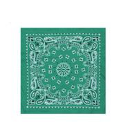 Jade Green Bandana - View