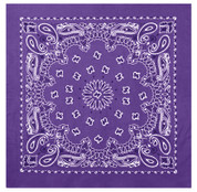 Purple Trainman Bandana