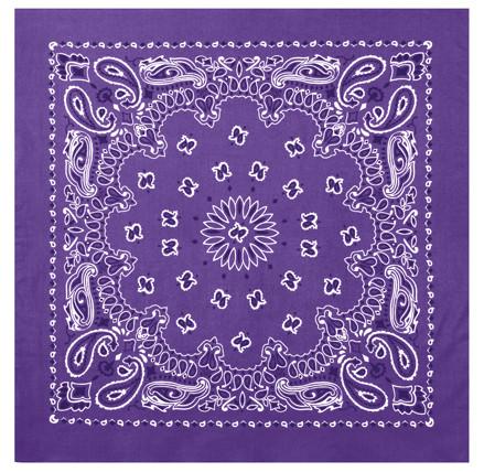 1119f45a118fda Buy Purple Trainman Bandana
