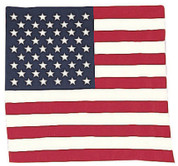 United States Flag Bandana - View