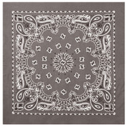 Grey Trainman Bandana - Bandanas - View