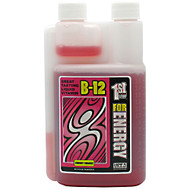1st Step for Energy, B12, Cherry Charge, 16 fl oz (1 pt) 518.40 ml