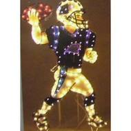 "Carolina Panthers 44"" Animated Lawn Figure"