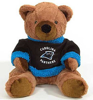"Carolina Panthers 20"" Plush Bear"