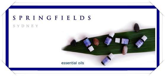 springfields-ess-main-page.jpg