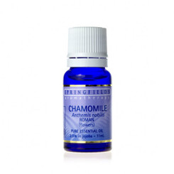Chamomile (Roman) 2.5% in Jojoba 11ml