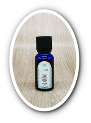 Ginger Essential Oil 15ml