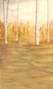 Golden days - watercolour golden autumnal birch trees photographer backdrop