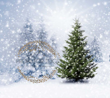 The littlest fir tree Christmas Photographers Backdrop