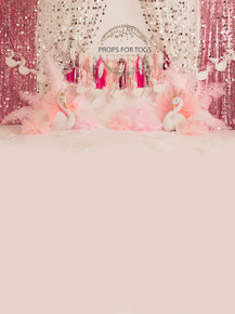 Designs by Honey Pie photography HPP_2659  .photographers backdrops for  cake smash photoshoots