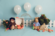 Peter rabbit photography backdrop Really cute little scene with peter rabbit  Designs by Honey Pie photography   -   photographers backdrops . . .Please Add to your notes if you would like landscape (with no Floor) or portrait with floor added ..thank you   Some of the props used in this image are from the fabulous Original photo blocks which can be purchased here. https://theoriginalphotoblocksprops.com  No designs are to used or resold as a digital image in any form.