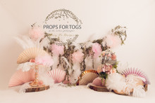 Designs by Honey Pie photography HPP_ 8658 .photographers backdrops for  cake smash photoshoots