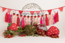 Designs by Honey Pie photography HPP_ 8888 .photographers backdrops for  cake smash photoshoots