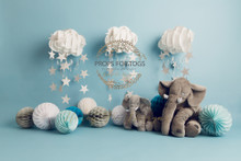 Designs by Honey Pie photography HPP_ 9868 .photographers backdrops for  cake smash photoshoots