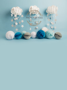 Designs by Honey Pie photography HPP_ 9871 .photographers backdrops for  cake smash photoshoots
