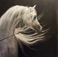 Judi Kent-Pyrah card - Beauty