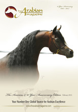 Our beautiful cover star - Emerald J owned by Al Muawd Stud