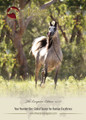 The Arabian Magazine Issue 95 - July 2015 The European Edition