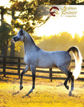 The front cover of The Arabian Breeders' Magazine Volume II Issue III  - Exxalt