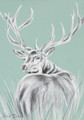 Wend Britton - Cards - Grey Stag