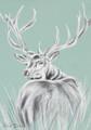 Wend Britton - Cards - Grey Stag