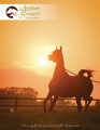 The Arabian Breeders' Magazine - Volume III Issue IV