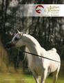 The 2020 Arabian Breeders' Magazine Collectors' Edition