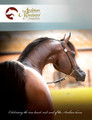 The Arabian Breeders' Magazine - Volume V Issue II