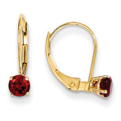 14k Garnet Earrings - January XBE73-Lex and Lu