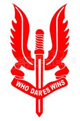No Fear Who Dares Wins Decal Sticker DM